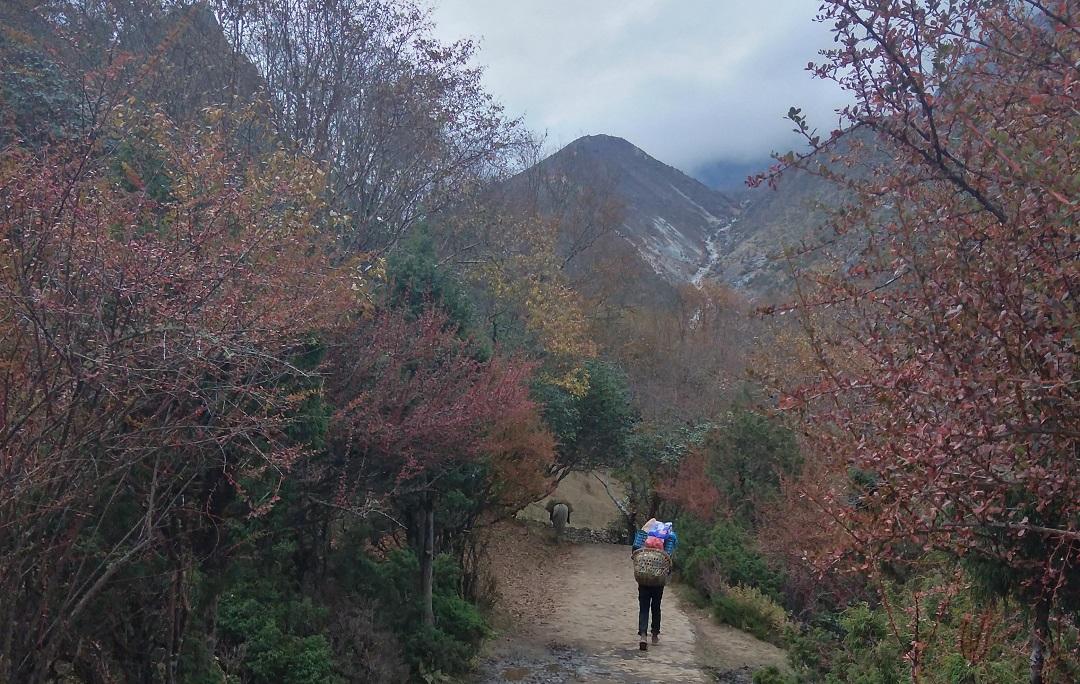 A porter heading towards Tengboche on a beautiful October morning
